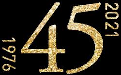 Logo 45 anni